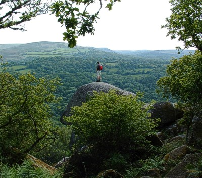 Walking on Dartmoor - with direct access from Mitchelcroft Bed and Breakfast, at Scorriton, near Buckfastleigh, south Devon