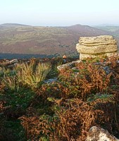 Dartmoor on your doorsetp at Mitchelcroft Bed and Breakfast at Scorriton, near Buckfastleigh
